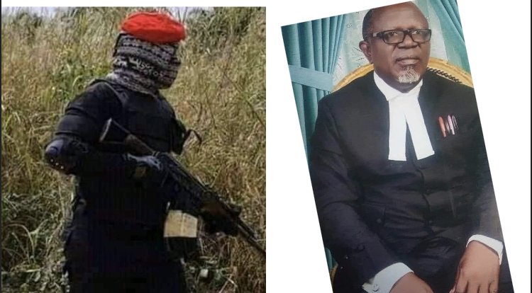 Face-to-Face: How I encounter with IPOB/ESN - Barrister Onwuaghalu